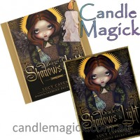Wisdom of Shadows & Light Set (HARDCOVER) by Lucy Cavendish