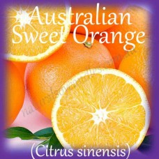 Tealights 10pk ~ EO ~ AUSTRALIAN SWEET ORANGE (Citrus sinensis)