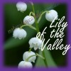 Lily Of The Valley (5)
