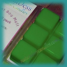 Clamshell Fragrant Soy Melt - 80+ hours - Exotic Woods