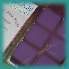 Clamshell Fragrant Soy Melt - 80+ hours - Blueberry Muffin