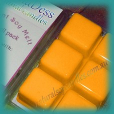 Clamshell Fragrant Soy Melt - 80+ hours - Cinnamon & Orange
